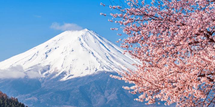 Tokyo Layover-Mt Fuji