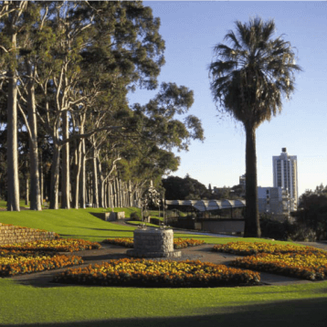kings park- WOC layover tips